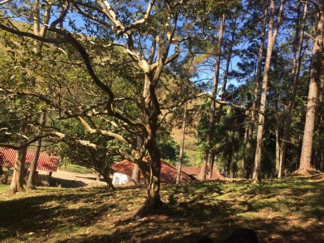 CONDOMÍNIO ALPES,GUARAREMA,São Paulo,Brasil 08900000,4 Quartos Quartos,Casa,1397