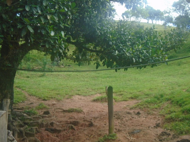 RICARDO RAMIRES,MORRO BRANCO,GUARAREMA,São Paulo,Brasil 08900000,Sítio,RICARDO RAMIRES,1528