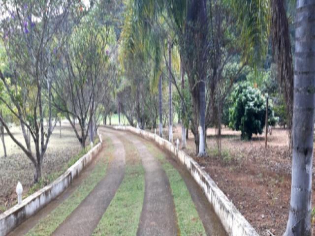 ROMEU TANGANELI,LUIZ CARLOS,GUARAREMA,São Paulo,Brasil 08900000,Chácara,ROMEU TANGANELI,1606